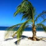Playa Cabuyal 9