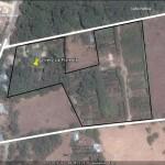 000 Vivero Santa Cruz (Google Maps CRNT 3)