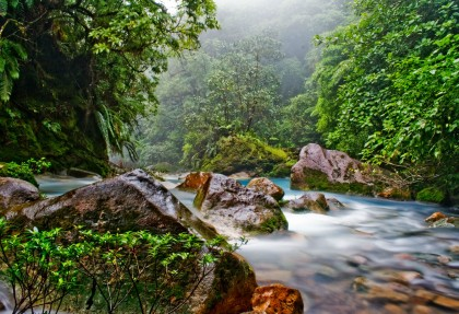 la forza della natura la costaricabellezza e natura