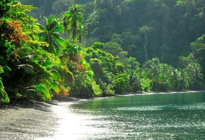 Parchi e le Riserve Nazionali della Costa Rica.
