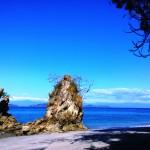 Isla Tortuga (foto7 con logo)