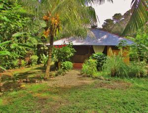 Caribe Town Resort (natura)