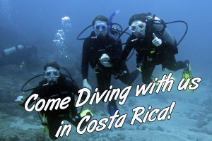 immersioni-snorkeling-costa-rica