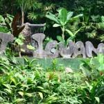 Lost Iguana Resort (2)