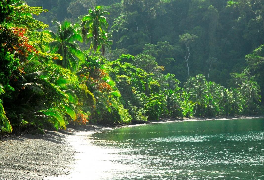 Risultati immagini per parchi naturali tropicali